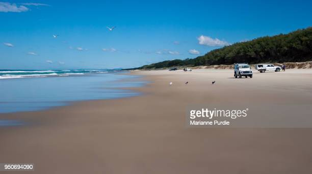 4WD vehicles driving on the beach