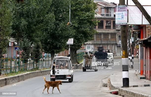 Vehicles of CRPF and police patrol during the curfew hours on August 7 2016 in Srinagar India Kashmir has been reeling under violence curfew and...
