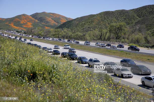 Vehicles sit in traffic near the exit to view poppy fields during a 'super bloom' in Lake Elsinore California US on Saturday March 16 2019 California...