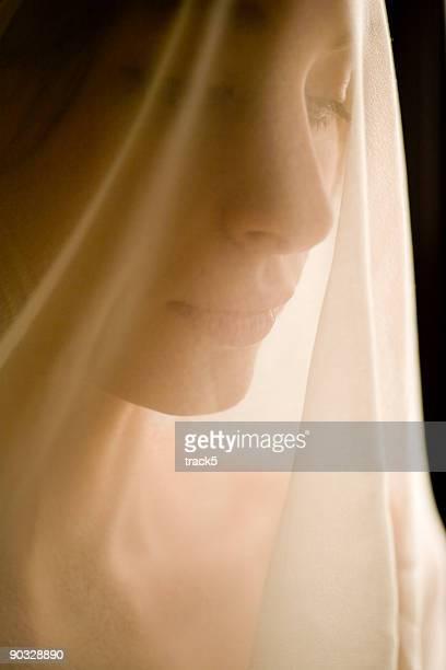 veiled concern - wedding veil stockfoto's en -beelden