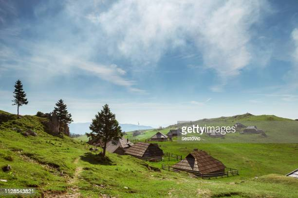 velika planina, slovenija - slovénie photos et images de collection