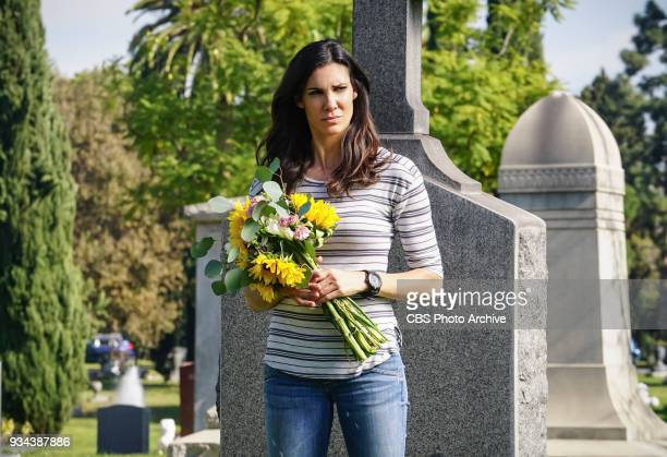 'Vendetta' Pictured Daniela Ruah Callen and Sam join forces with Anna Kolcheck and the Bureau of Alcohol Tobacco and Firearms when Arkady Kolcheck...