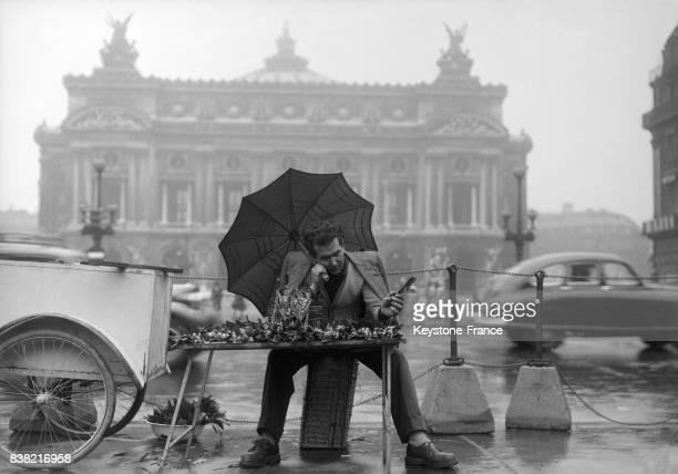 Vendeur de muguet sous la pluie Pace de l'Opéra à Paris France en 1951