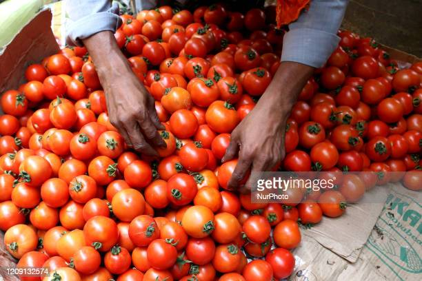 Vendor arranges tomato at a wholesale vegetable market during a government-imposed nationwide lockdown as a preventive measure against the COVID-19...