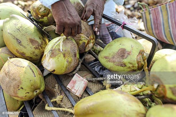 Vendor handles coconuts as a bundle of Indian twenty rupee banknotes sits nearby in Nagapattinam, Tamil Nadu, India, on Sunday, Oct. 16, 2016....