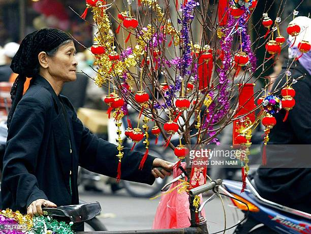 A vendor hawks small decorative red lanterns for lunar new year along a street in downtown Hanoi 17 January 2004 Vietnam ushers in the Year of the...