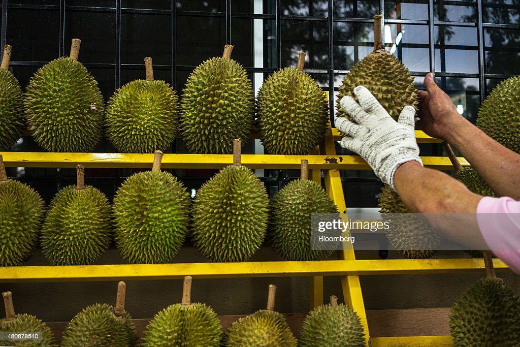 A vendor picks a durian from a shelf at road side stall in Petaling Jaya, Selangor, Malaysia, on Monday, July 13, 2015. The Southeast Asian native fruit -- known for its sweet, custardy flesh and banned from Singapore's subways and hotels because of its pungent odor -- can retail for more than S$40 ($30) apiece in Singapore. Photographer: Sanjit Das/Bloomberg via Getty Images