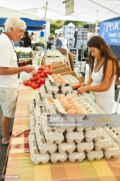 Vendor sells basil Farmers Market Santa Barbara California
