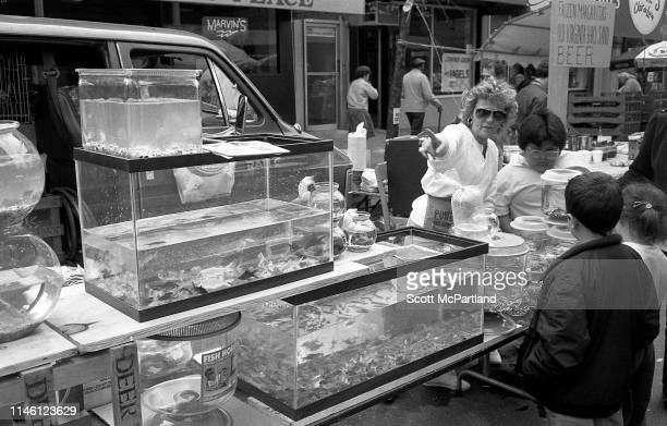 A vendor sells points out goldfish and other fish to several children on 9th Avenue in Hell's Kitchen New York New York May 14 1988