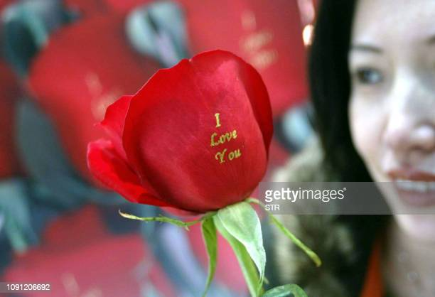 "Vendor shows off plastic roses with the words ""I Love You"" at a florist shop in Beijing, 13 February 2005, ahead of Valentine's Day. Lovestruck and..."