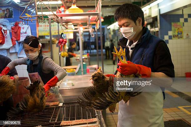 A vendor transfers live chickens to cages at the Kowloon City Market in Hong Kong China on Thursday April 11 2013 The Hang Seng Index rose 08 percent...