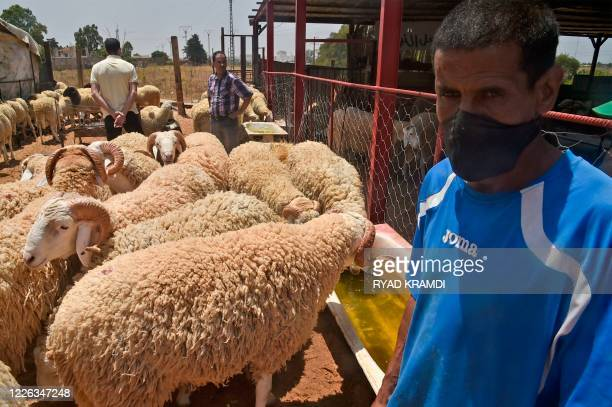 A vendor waits for costumers at a livestock market in the Algerian capital Algiers on July 12 ahead of Eid alAdha celebrations which might be...