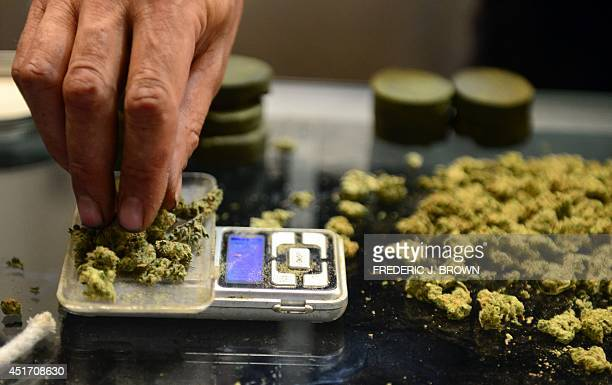 A vendor weighs buds for cardcarrying medical marijuana patients attending Los Angeles' firstever cannabis farmer's market at the West Coast...