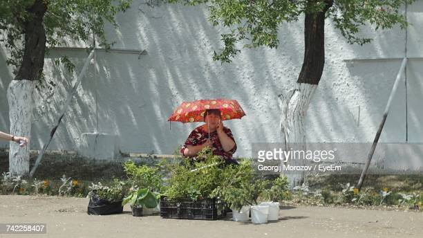 Vendor With Umbrella Selling Plants While Sitting On Street