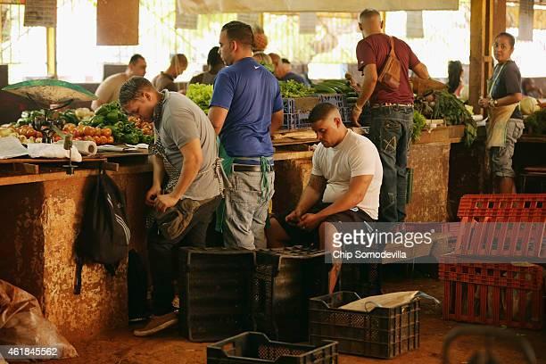 Vendors sell vegatables in the Mercado Agropecuario in the Vedado neighborhood of Havana January 20 2015 in Havana Cuba Legal in Cuba since the...