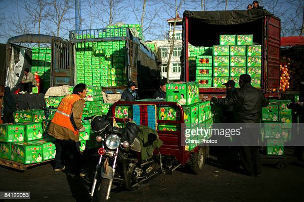 Vendors unload fruits at the Xinfadi Fruit Wholesale Market on December 25 2008 in Beijing China Inflation dropped to a 22month low in November...