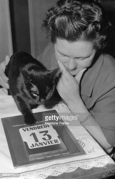 Vendredi 13 date bénéfique que ce chaton noir indique sur le calendrier d'un délicat mouvement de patte en France