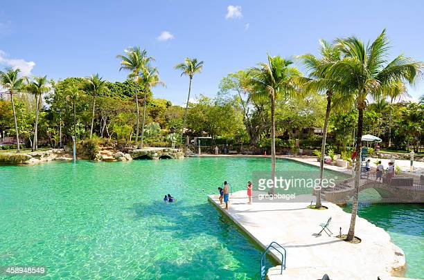 venetial pool in coral gables, fl - coral gables stock pictures, royalty-free photos & images
