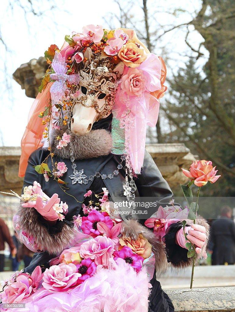 Karneval von Venedig : Stock-Foto