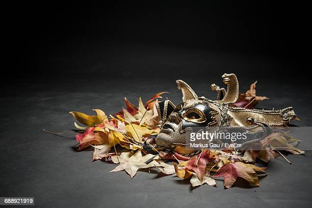 Venetian Mask With Autumn Leaves Against Black Background