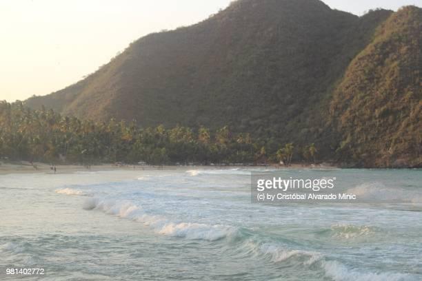 Venezuela: Choroní Beach