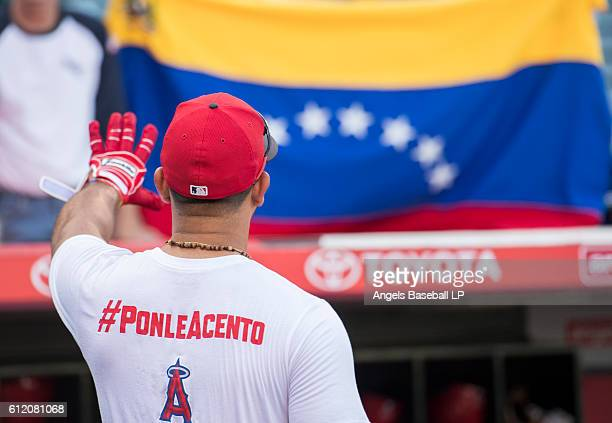 Venezuelan native Carlos Perez of the Los Angeles Angels of Anaheim waves to a fan holding the Venezuelan flag during batting practice before the...