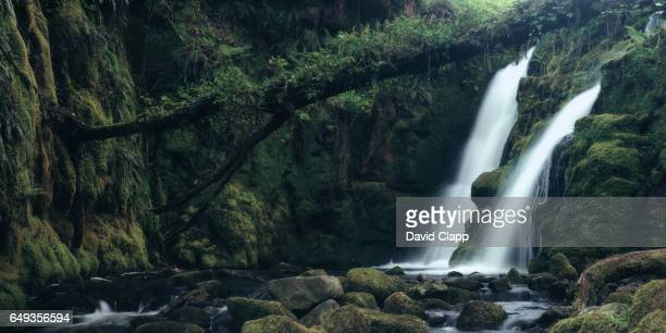 venford falls on dartmoor, devon - waterfall stock pictures, royalty-free photos & images