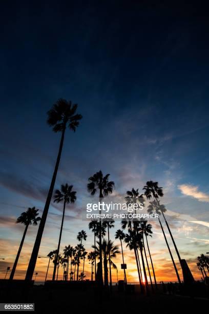 Venice Beach at sunset