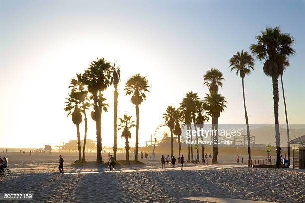 venice beach, ca at sunset - kalifornien stock-fotos und bilder