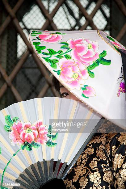 ベニスのカーニバル 2010-2 - fotofojanini ストックフォトと画像