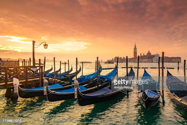 venice gondolas on san marco square, venice, italy. - canale grande venedig stock-fotos und bilder