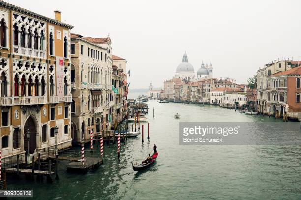 venice in the fog - bernd schunack stock pictures, royalty-free photos & images