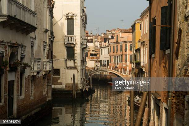 venice - lara platman stock pictures, royalty-free photos & images