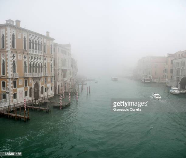 venice with fog - vaporetto stock pictures, royalty-free photos & images