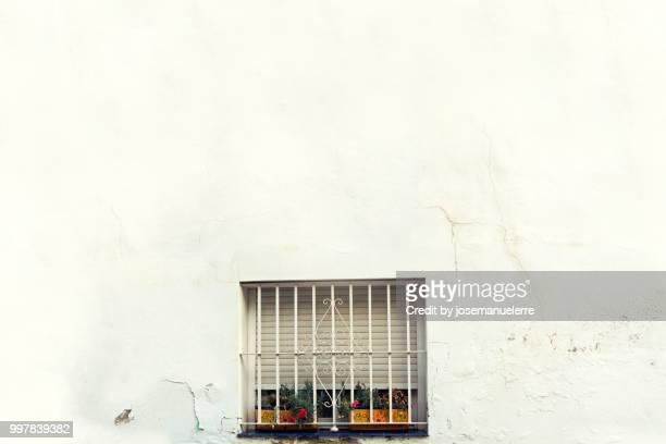 ventana española minimalista con flores - josemanuelerre fotografías e imágenes de stock