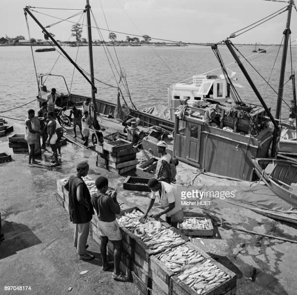 Port of abidjan photos et images de collection getty images for Vente de poisson