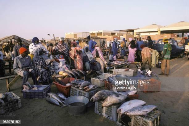 Vente de poissons au retour de la pêche à Nouakchott en Mauritanie le 16 mars 1984