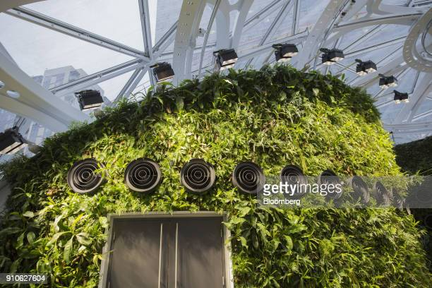Ventilation ducts are seen on a wall of plants to pump in fresh air and simulate natural breezes inside the Amazoncom Inc Spheres in Seattle...