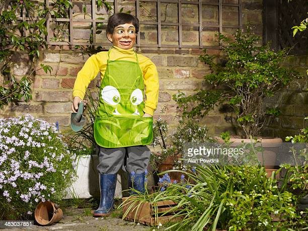 ventriloquist doll gardening - hobbies stock pictures, royalty-free photos & images