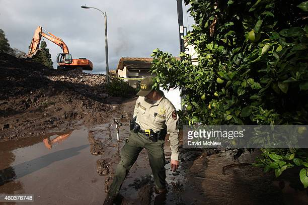 Ventura County Sheriffs deputy walks through mud and passes an orange tree as a backhoe clears a pile of rocks and mud after debris flows smashed...
