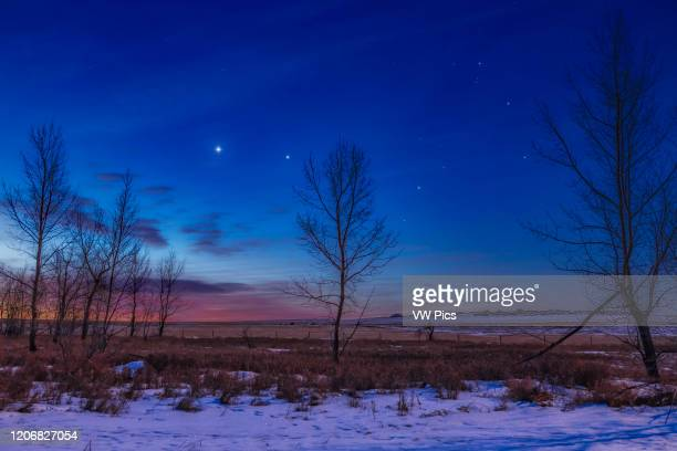 Venus and Jupiter close together in the dawn sky and to the east of Scorpius here at right with reddish Antares between the trees This was January 26...