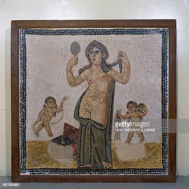 Venus at her toilet mosaic from Thuburbo Majus Tunisia Roman civilisation 3rd century AD Tunis Musée National Du Bardo