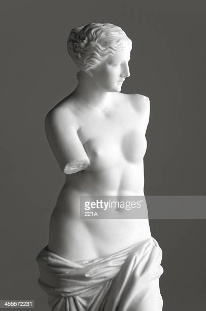venus de milo on grey - classical greek style stock pictures, royalty-free photos & images
