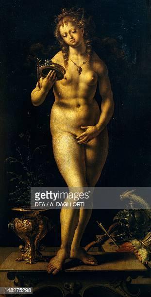 Venus or Vanitas by Jan Gossaert oil on panel 59x299 cm Rovigo Pinacoteca Dell'Accademia Dei Concordi