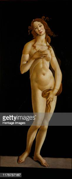 Venus Pudica, circa 1485-1490. Found in the Collection of Galleria Sabauda, Torino. Artist Botticelli, Sandro .