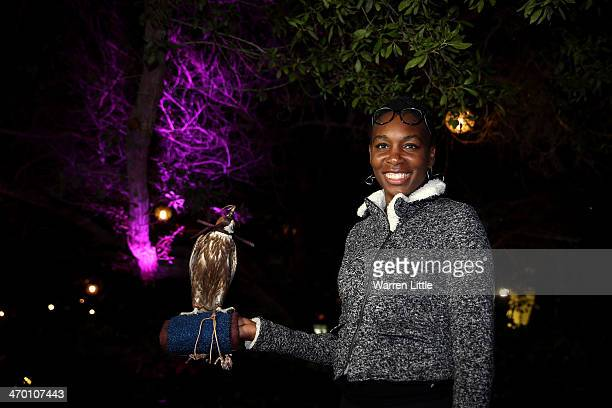 Venus Williams of the USA poses with a falcon during the players party on day two of the WTA Dubai Duty Free Tennis Championship at the Dubai Tennis...