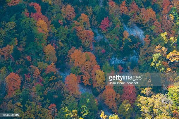 Verdon Canyon autumn provence France