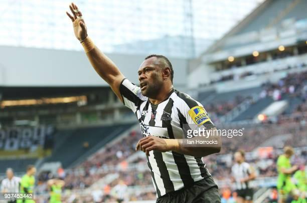 Vereniki Geneva of Newcastle falcons scores his team's second try and celebrates like Alan Shearer during the Aviva Premiership match between...