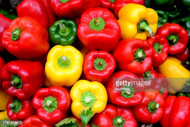 Verities vegetables displayed in the National Vegetable exhibition at Agricultural Institute in Dhaka Bangladesh on January 3 2020 Bangladesh...
