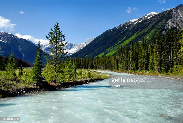 vermilion river in kootenay national park, bc,canada. - british columbia stock pictures, royalty-free photos & images